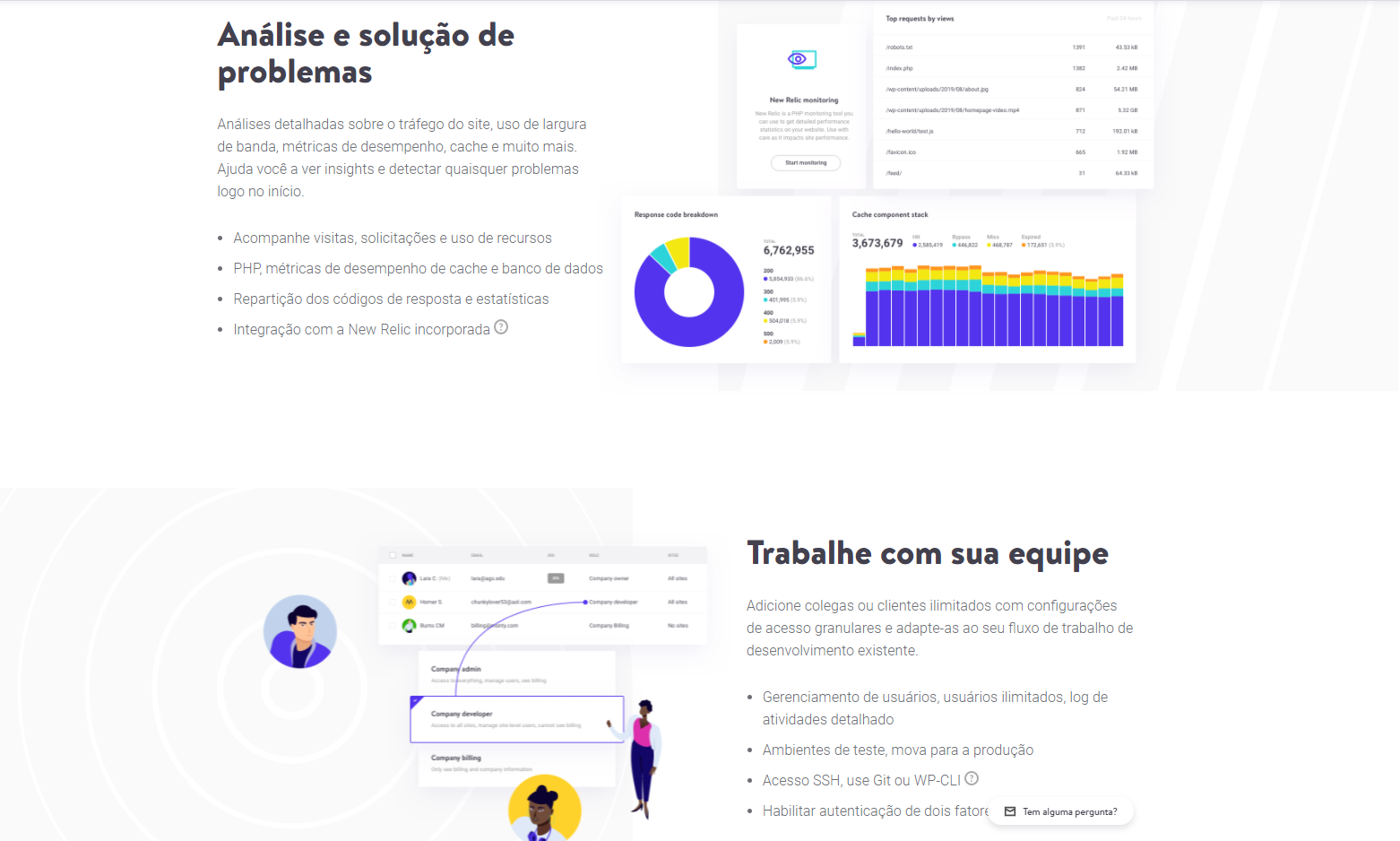 Review do Kinsta Brasil
